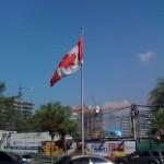 Que bien se ve la bandera con ese fondo