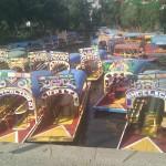 Conociendo Xochimilco
