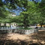 @ South Garden