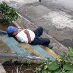 Cualquier lugar es bueno para una siesta …