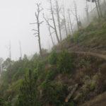Deambulando por senderos en las faldas del Acatenango