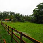 Que tranquilidad en el parque Hun Nal Ye